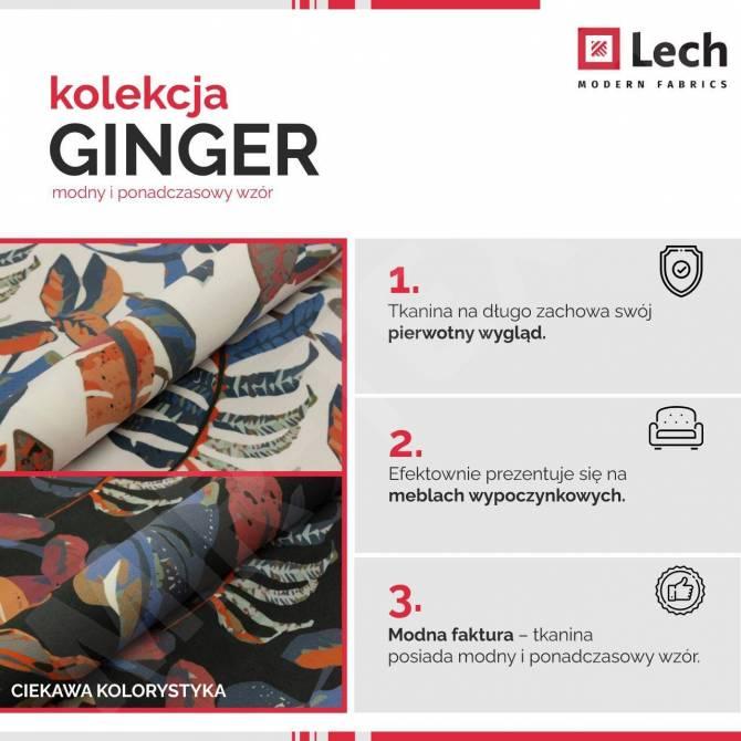 Kolekcja tkanin Ginger